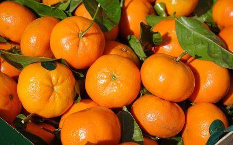 Aceite Esencial de Mandarina: Propiedades y Beneficios Comprobados