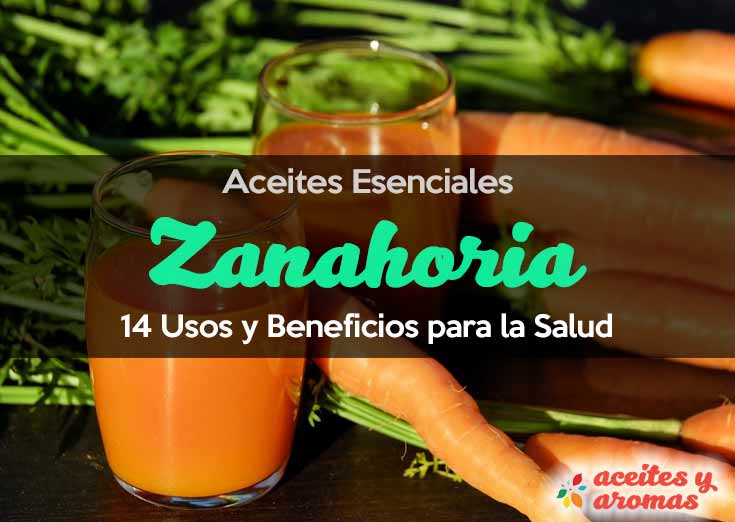 Aceite Esencial de Zanahoria: Usos y Beneficios