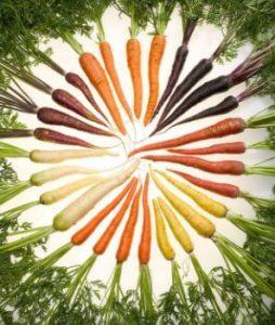 Beneficios del aceite de zanahoria