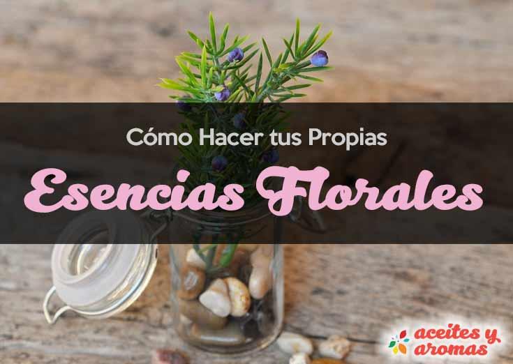 56097e0da Cómo Hacer Esencias Aromáticas Naturales y Caseras con Flores